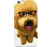 Precious Goldendoodle puppy! iPhone Case/Skin