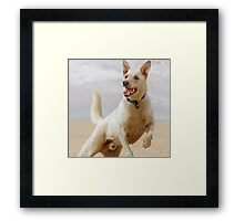 Throw The Ball Already! Framed Print