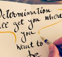 Determination Will Get You Where You Want To Be Sticker
