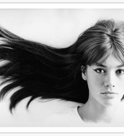 Françoise (Francoise) Hardy - History's Most Fashionable Hair Sticker