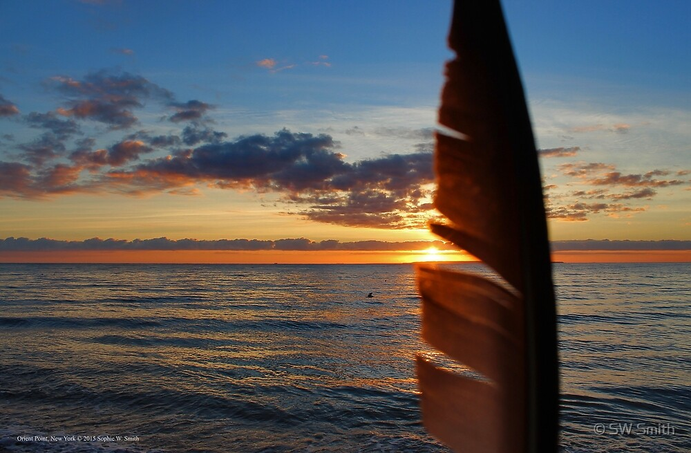 Sunrise Behind The Seagull's Feather   Orient Point, New York by © Sophie W. Smith