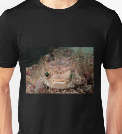 Orbicular Burrfish off Si Amil Island, Sabah, Malaysia Unisex T-Shirt