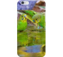 Baby Budgie iPhone Case/Skin