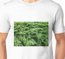 Fern texture background 1 Unisex T-Shirt