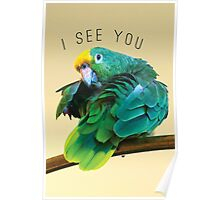 I see you. Sly Parrot Photo Poster