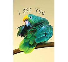I see you. Sly Parrot Photo Photographic Print