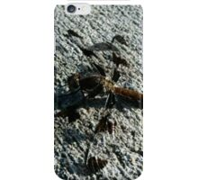 Dragon on the day iPhone Case/Skin