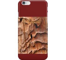 Plants of East Gippsland: Dead Acacia wood iPhone Case/Skin