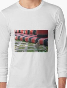 Pigeon next to mattress in the park. Long Sleeve T-Shirt
