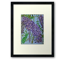 Purple Wisteria Flowers Framed Print