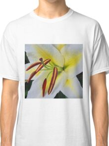 Lily Pillow, Scarves, and other products . Classic T-Shirt