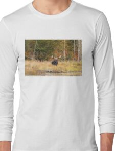 Bull Moose, Algonquin Park Long Sleeve T-Shirt
