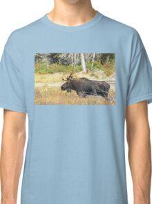 Big Bull Moose, Algonquin Park Classic T-Shirt