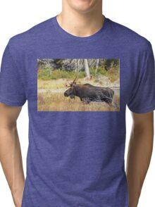 Big Bull Moose, Algonquin Park Tri-blend T-Shirt