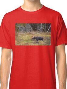Bull Moose, Algonquin Park Classic T-Shirt