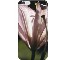 Backlit Beauty iPhone Case/Skin