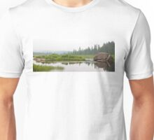 Algonquin Park - Costello Creek Unisex T-Shirt