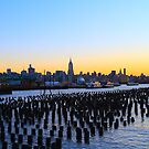 I Cover The Waterfront by pmarella