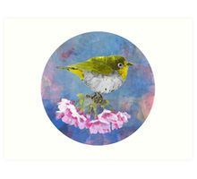 Green bird with cherry blossoms Art Print