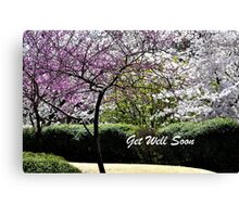Spring Trees Blooming Get Well Canvas Print