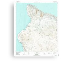 USGS TOPO Map Hawaii HI Hawaii County Sheet 1 349915 1980 100000 Metal Print