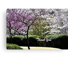 Spring Trees Blooming Thank You Canvas Print