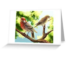 A Pair of Finches Greeting Card