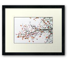 Orange Leaves and Gumballs Framed Print