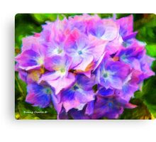 Hydrangea Dreams  (All Sales Proceeds Donated for Cancer Research) Canvas Print