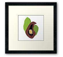 Skunk Cabbage Framed Print