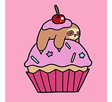 Cupcake Sloth Photographic Print