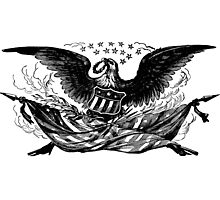 Vintage Eagle Photographic Print
