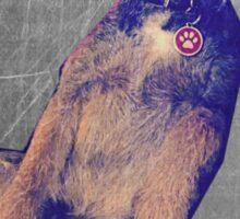 Border Terrier Sticker