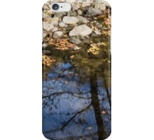 Water, Leaves, Stones and Branches iPhone Case/Skin
