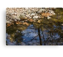 Water, Leaves, Stones and Branches Canvas Print