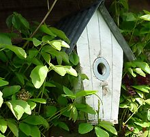 The Bird House 2 by Kaye Miller-Dewing