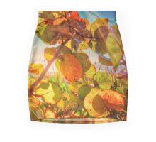 .Sun Kissed Mini Skirt