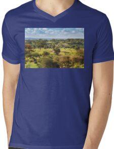 An Ancient Landscape Mens V-Neck T-Shirt