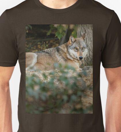 Boltz Unisex T-Shirt
