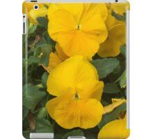 Spring Color - Virginia iPad Case/Skin