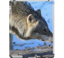 The Eurasian wolf iPad Case/Skin
