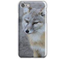 The corsac fox (Vulpes corsac) iPhone Case/Skin