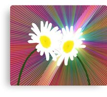 Rainbows and Daisies Canvas Print