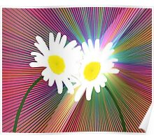 Rainbows and Daisies Poster