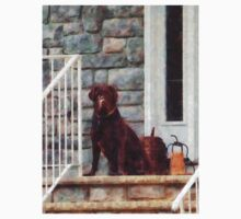 Chocolate Labrador on Porch One Piece - Short Sleeve