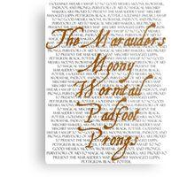 The Marauders Metal Print