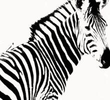 zebra love Sticker