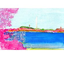 Washington Monument with Cherry Blossoms Photographic Print