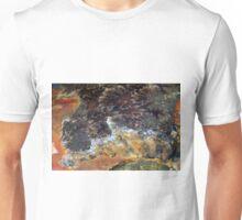 Ammonite 2 Unisex T-Shirt