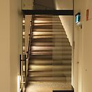 light walk by Tom McDonnell